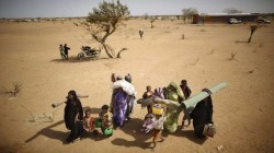 Fonte: sito ufficiale UNHCR