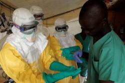 86622_ebola-oms-contrapapel