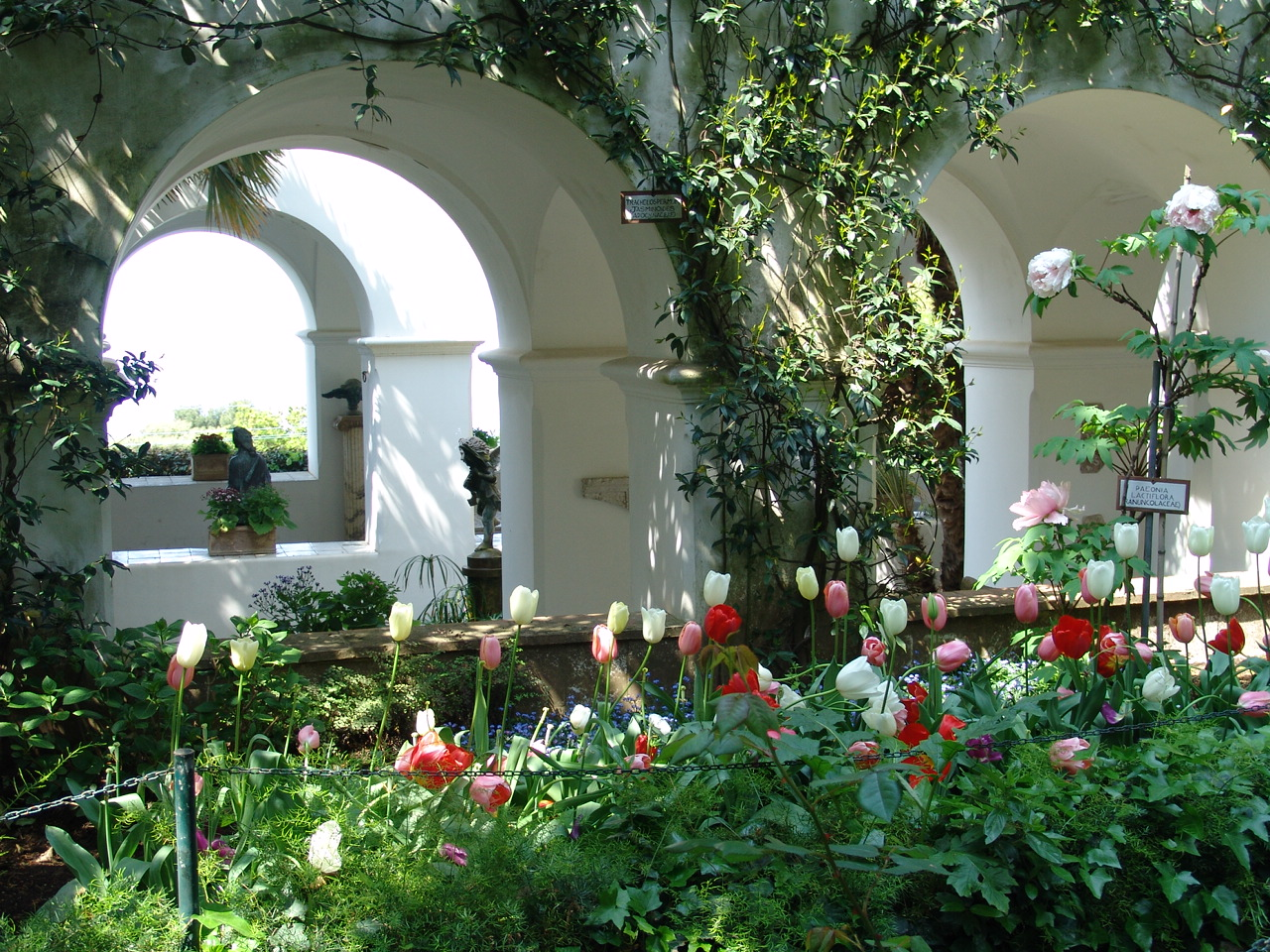 Giardino Villa San Michele  (11)