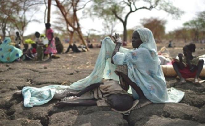 nigeria carestia fondi umanitari