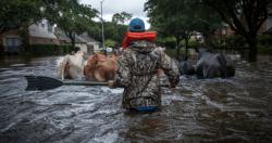 harvey cambiamento climatico
