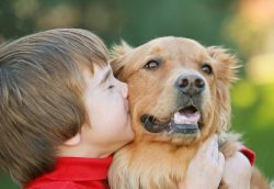 bigstock-boy-kissing-dog-2561362