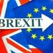 brexit referendum rappresentanza