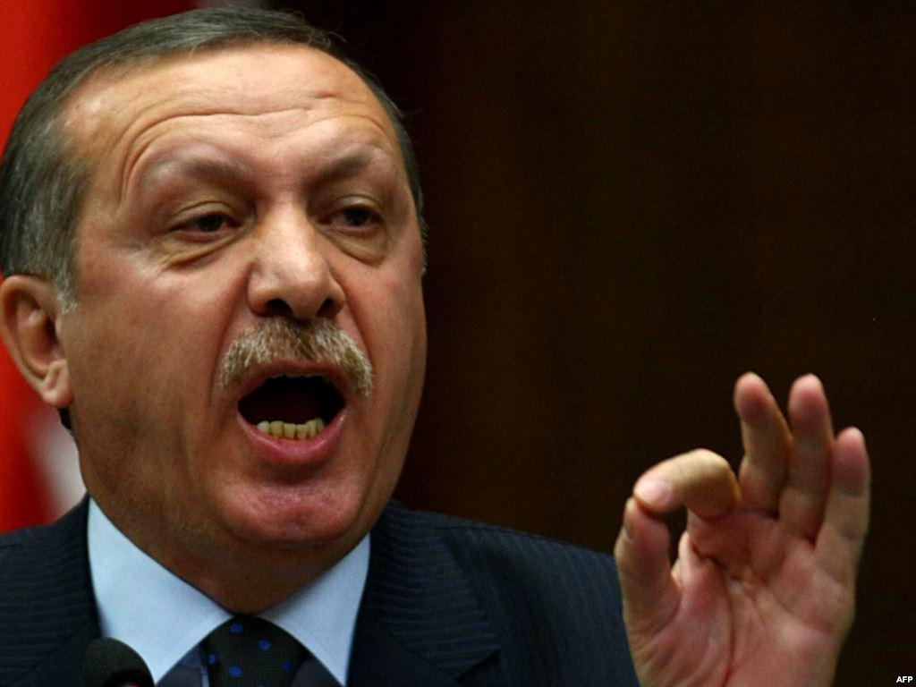 erdogan referendum interviste