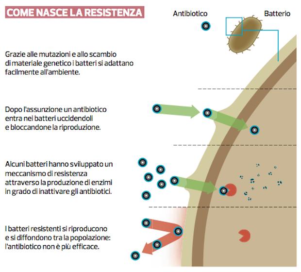 resistenza antibiotici
